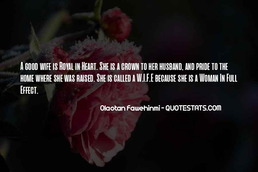 Olaotan Fawehinmi Quotes #793910