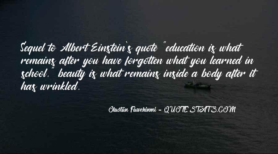 Olaotan Fawehinmi Quotes #989306
