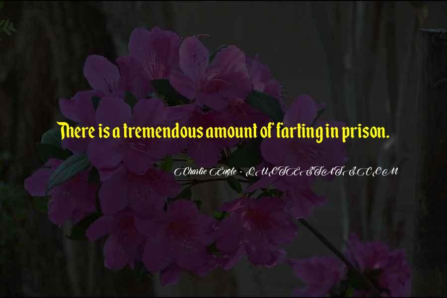 Pieter Geyl Quotes #253162