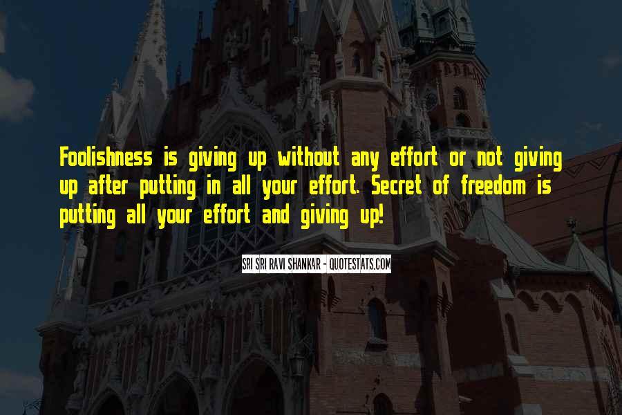 Ravi Shankar Quotes #100784