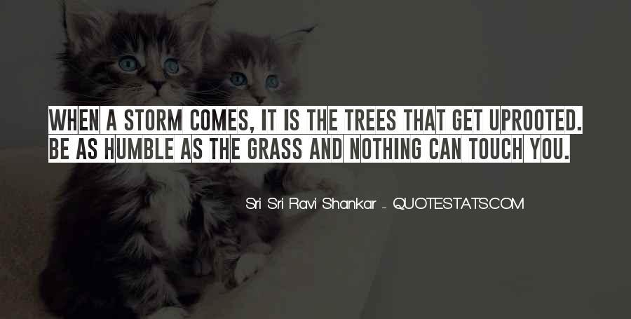 Ravi Shankar Quotes #488503