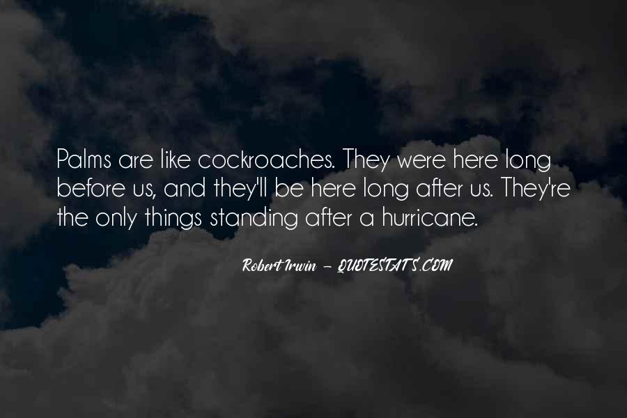 Robert Irwin Quotes #1384349