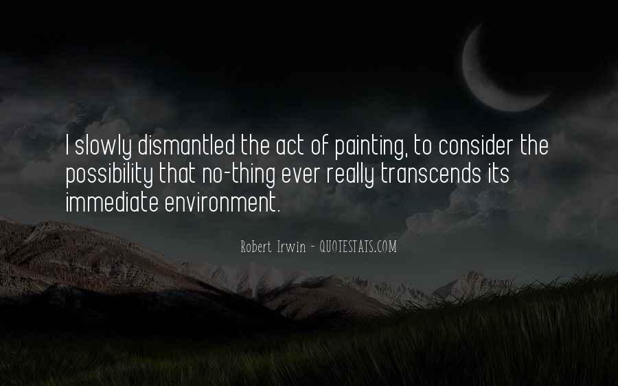 Robert Irwin Quotes #1474089