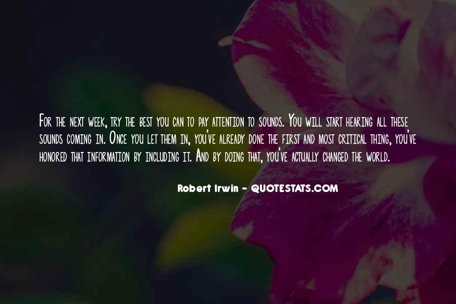 Robert Irwin Quotes #905511