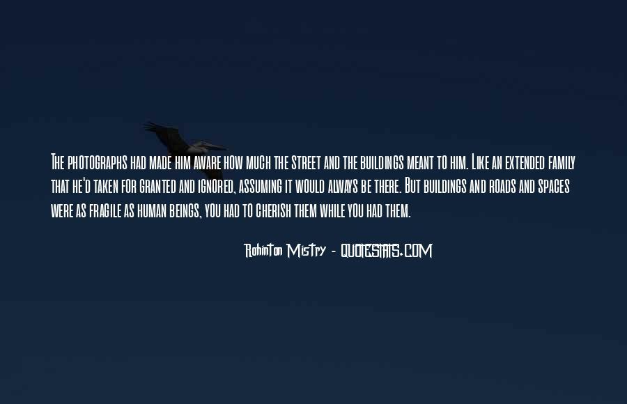 Rohinton Mistry Quotes #148169