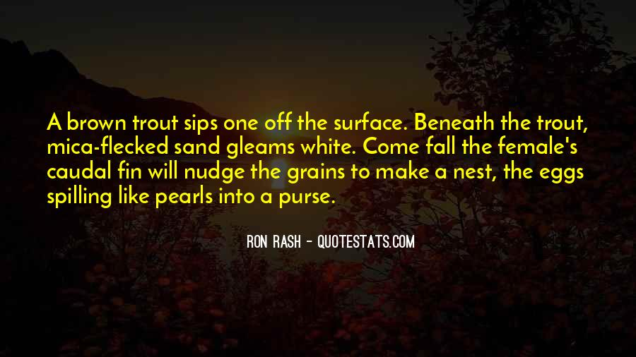 Ron White Quotes #79837