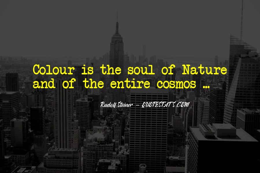 Rudolf Steiner Quotes #1253597