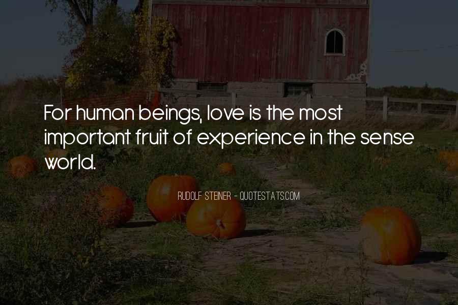 Rudolf Steiner Quotes #960604