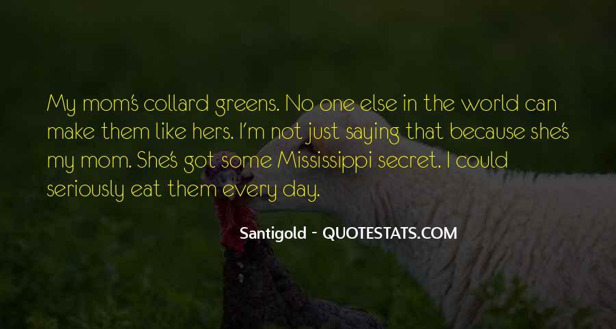 Santigold Quotes #333377
