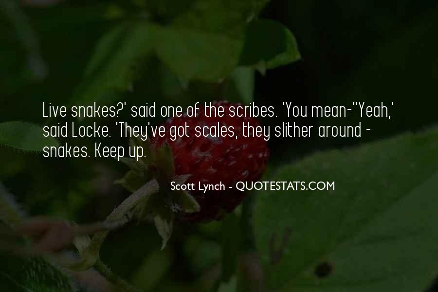 Scott Lynch Quotes #231093