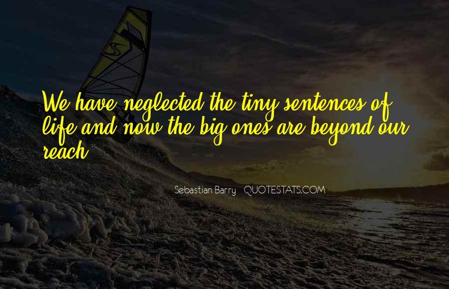 Sebastian Barry Quotes #1529995