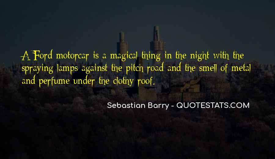 Sebastian Barry Quotes #421935