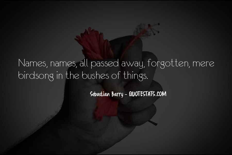Sebastian Barry Quotes #500908
