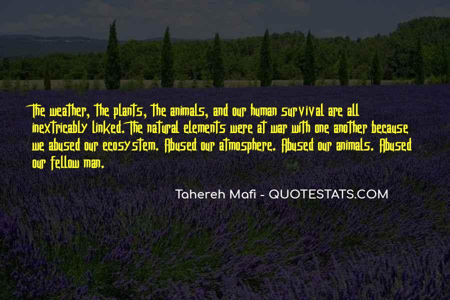 Tahereh Mafi Quotes #15056