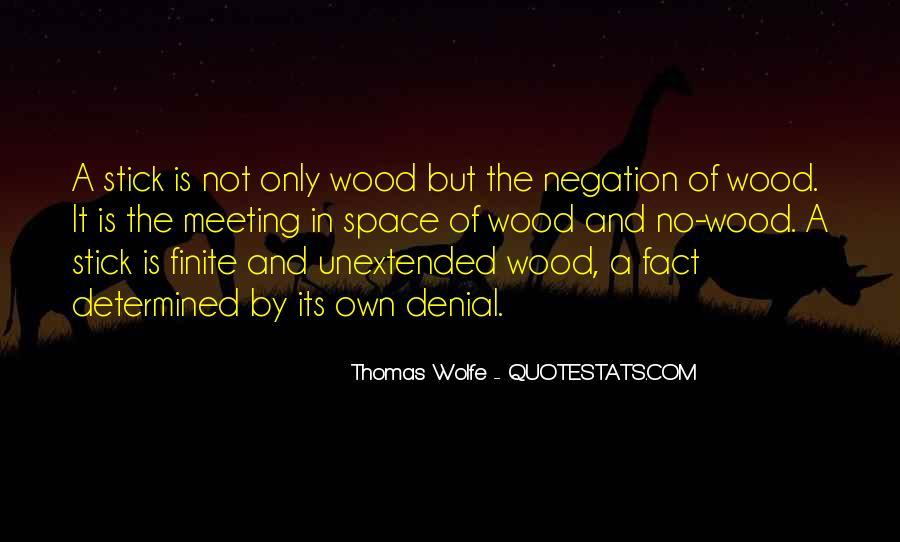 Thomas Wolfe Quotes #310733