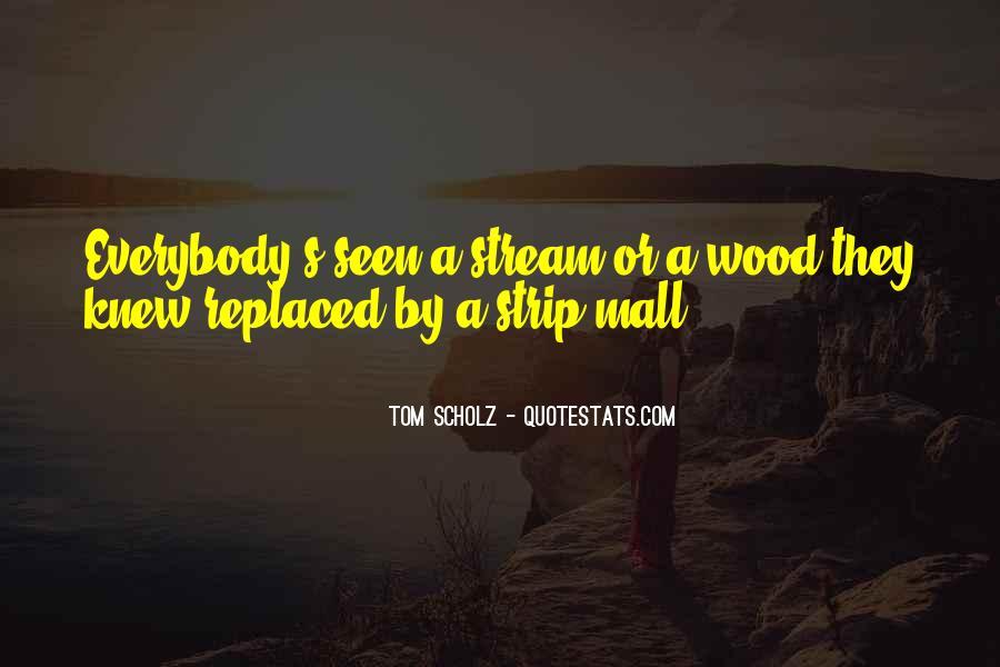 Tom Scholz Quotes #181588
