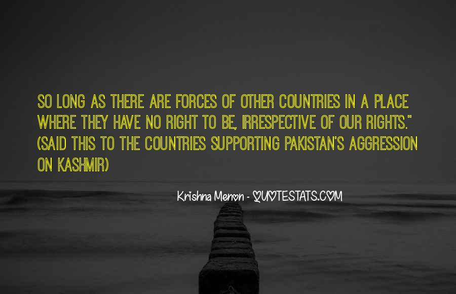 Quotes About The United Nations Security Council #1261904