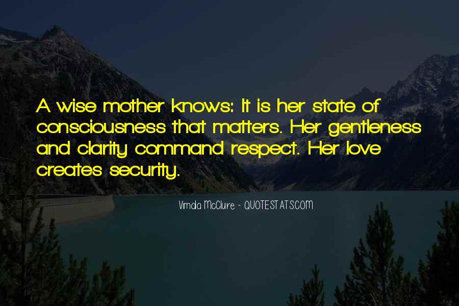 Vimala Mcclure Quotes #1647343