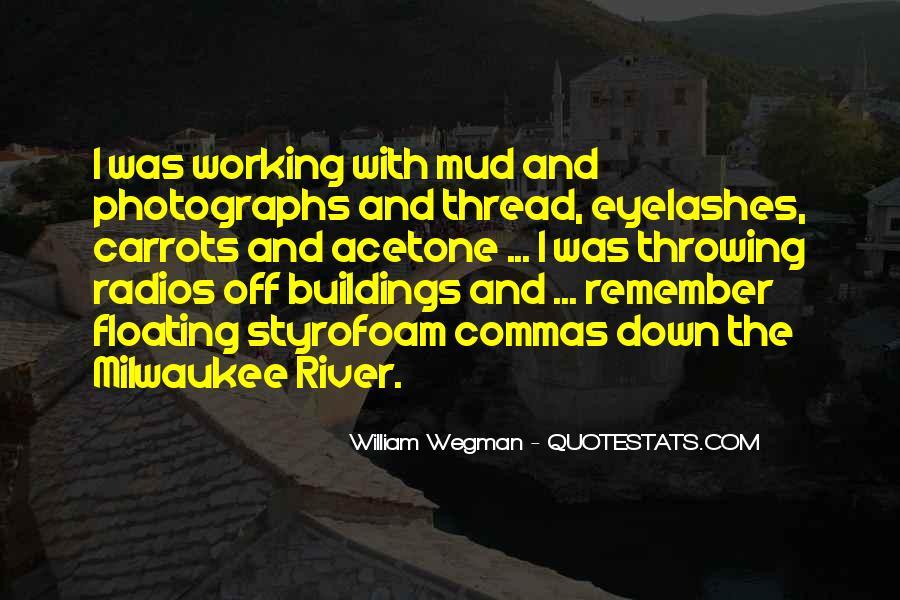 William Wegman Quotes #1848130