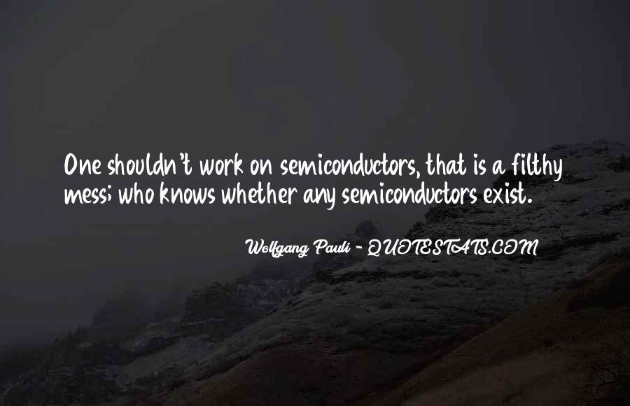 Wolfgang Pauli Quotes #394913