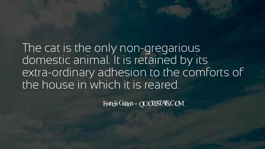 Adhesion Quotes #1259011