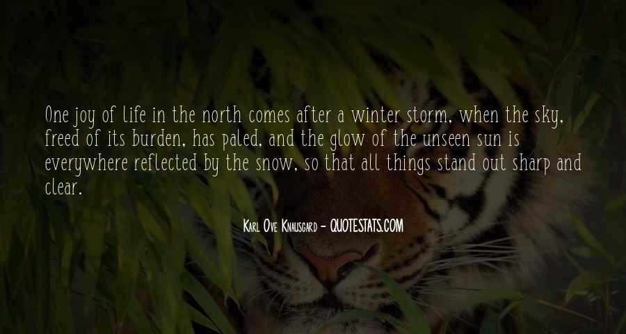 Quotes About Life After The Storm #1056485