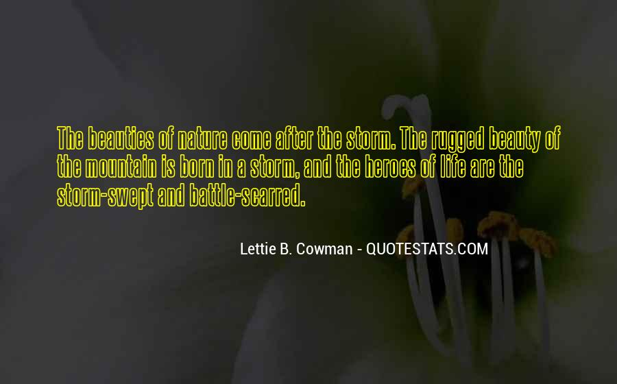 Quotes About Life After The Storm #1615014