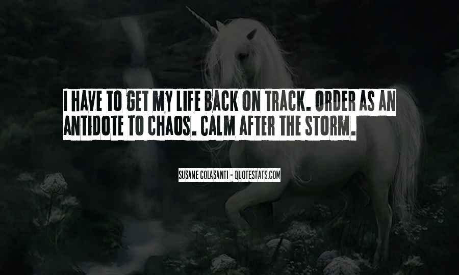 Quotes About Life After The Storm #574383