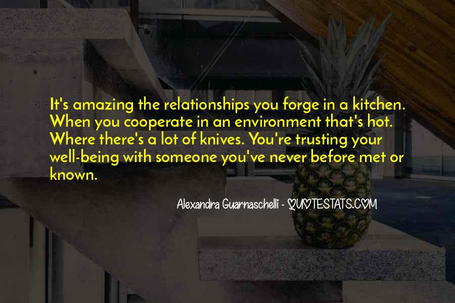 Quotes About Someone Not Trusting You #41411