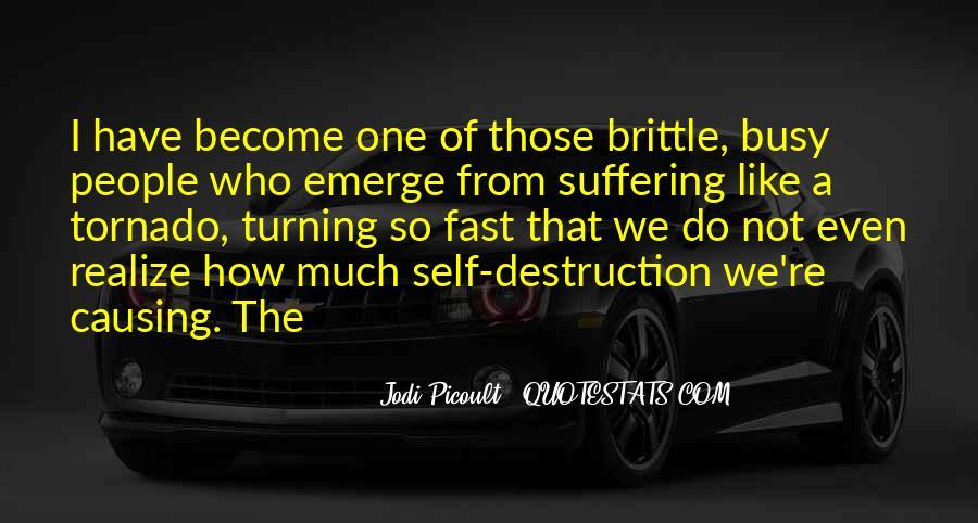 Quotes About Self Destruction #199024