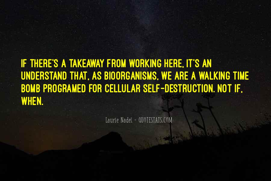 Quotes About Self Destruction #38484