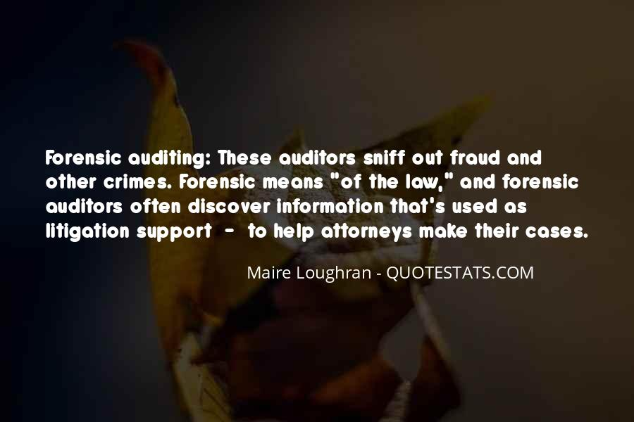 Auditing Quotes #1018919