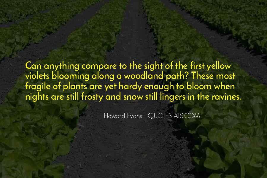 Belfour Quotes #876387