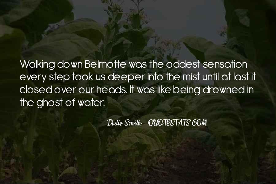 Belmotte Quotes #585373