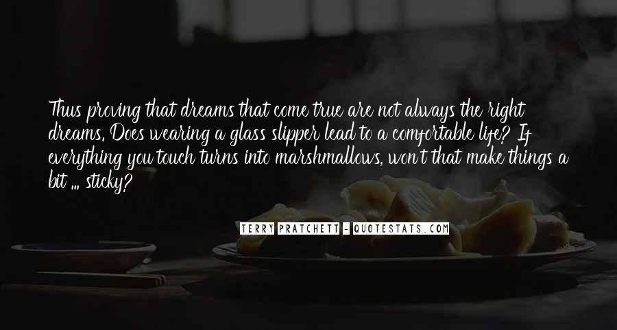 Quotes About Life Dreams #70207