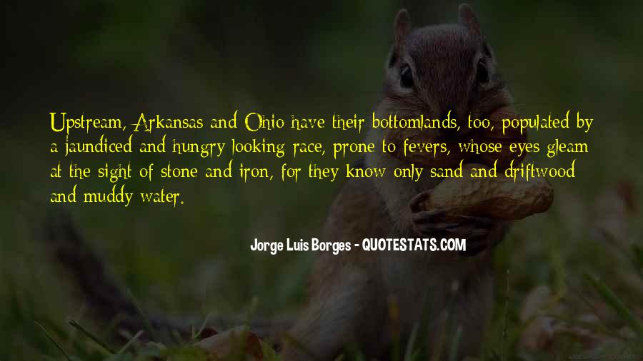 Bottomlands Quotes #1166358