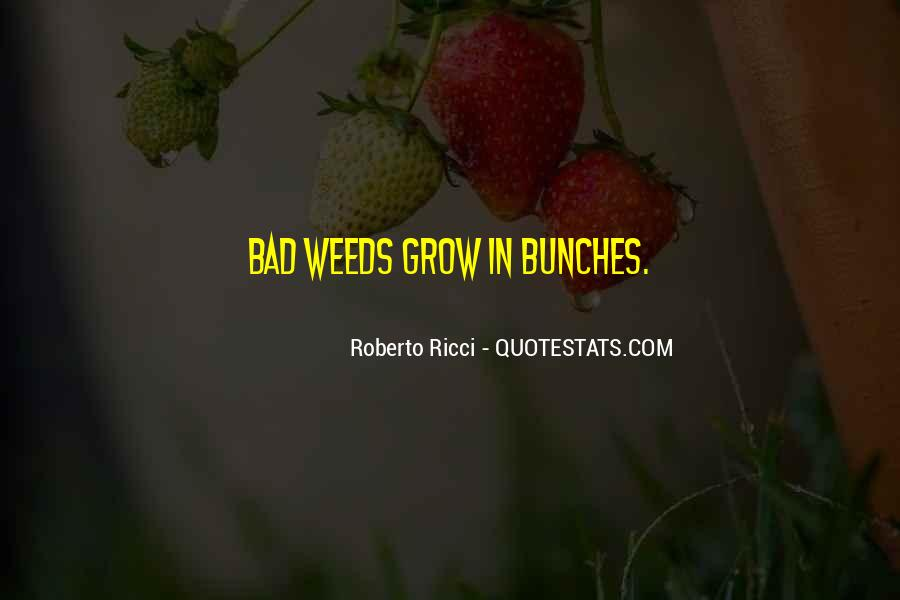 Bunches Quotes #1412239