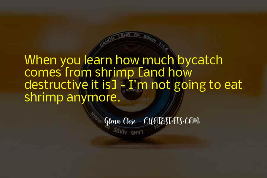 Bycatch Quotes #1248338
