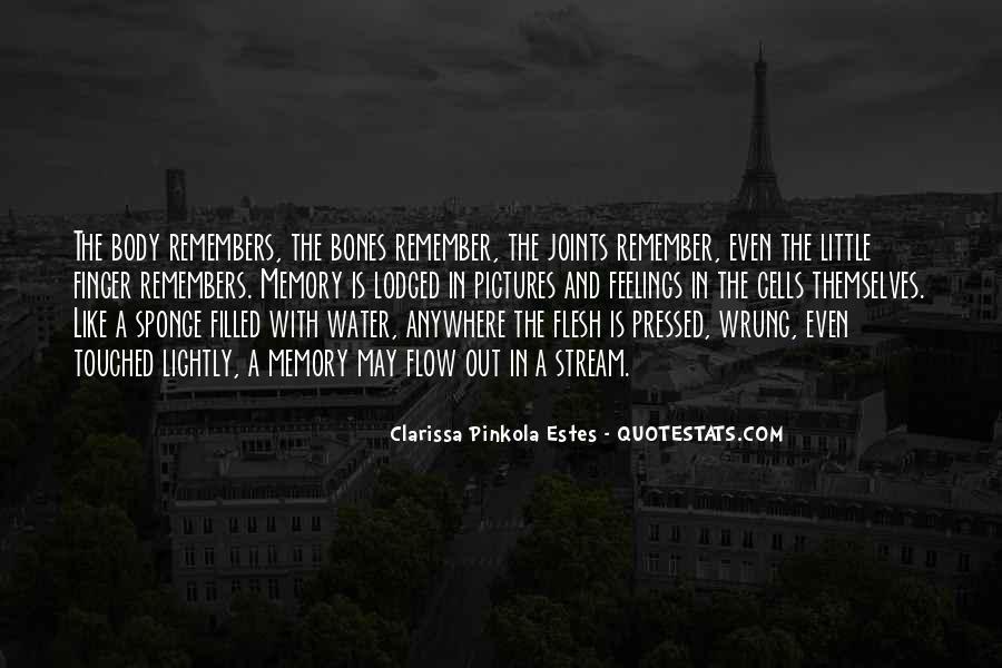 Clarissa's Quotes #691818