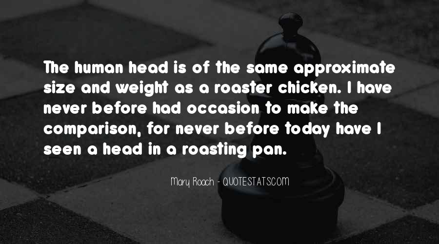 Quotes About Roasting #864636