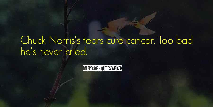 Crying's Quotes #314434