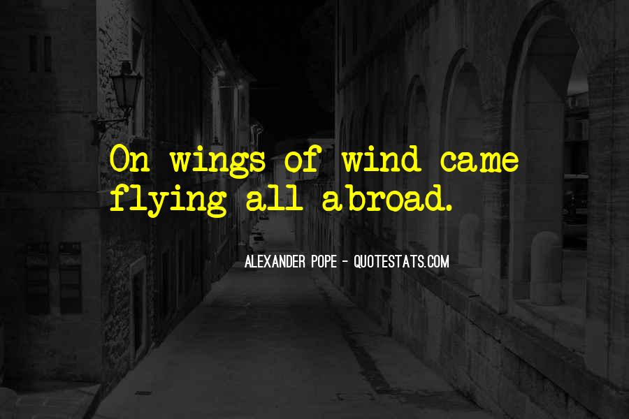 Quotes About Flying With Your Own Wings #119292