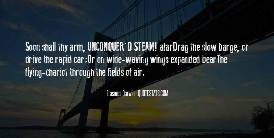 Quotes About Flying With Your Own Wings #218525