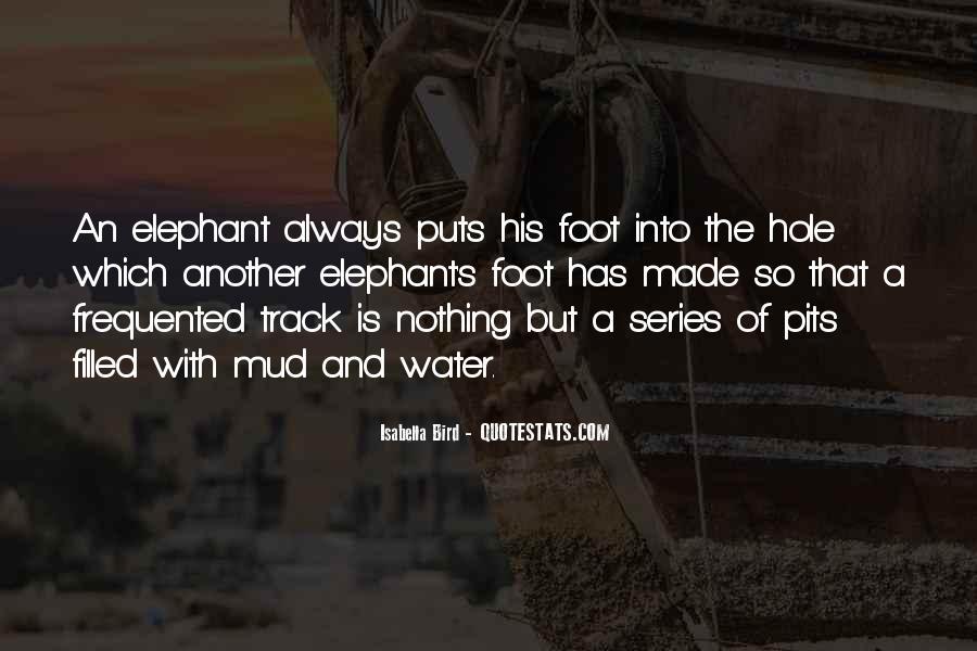 Dandysprat Quotes #1678695