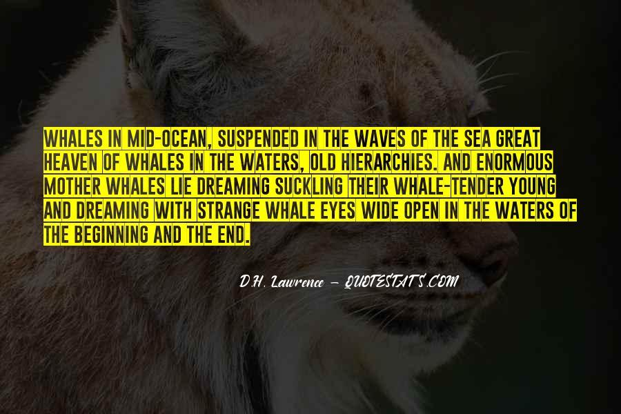 Dream'd Quotes #126224