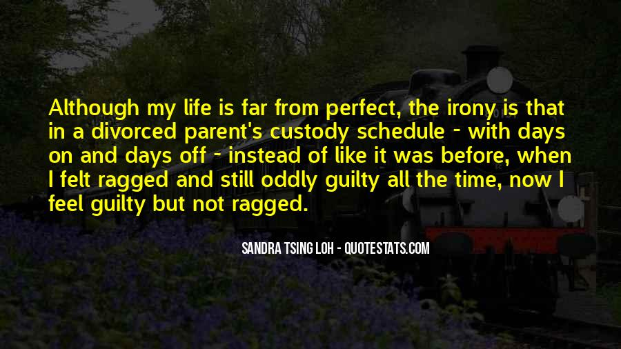 Quotes About Not Perfect Life #118143