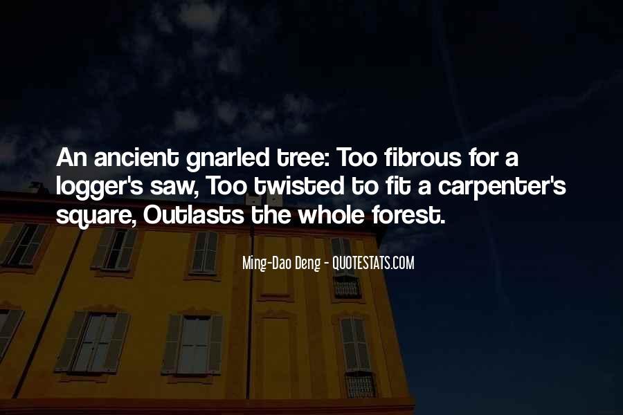 Fibrous Quotes #853818