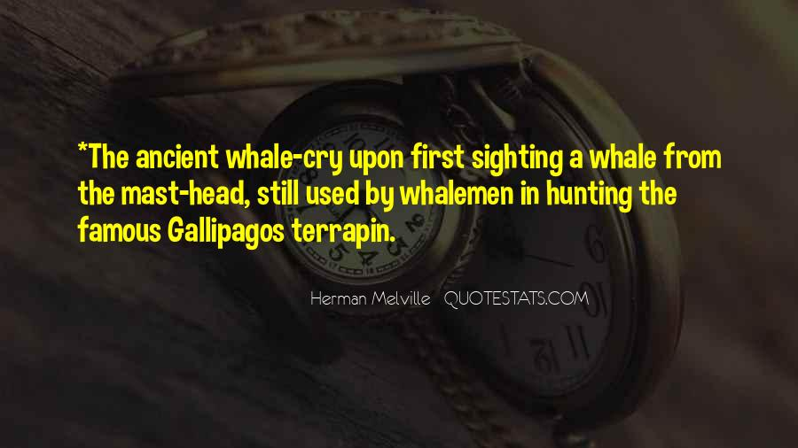 Gallipagos Quotes #823151