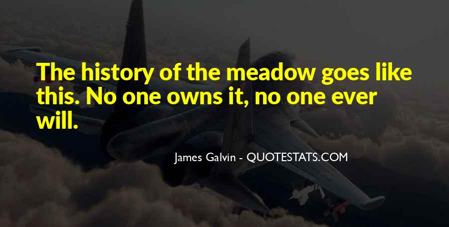 Galvin Quotes #1612237