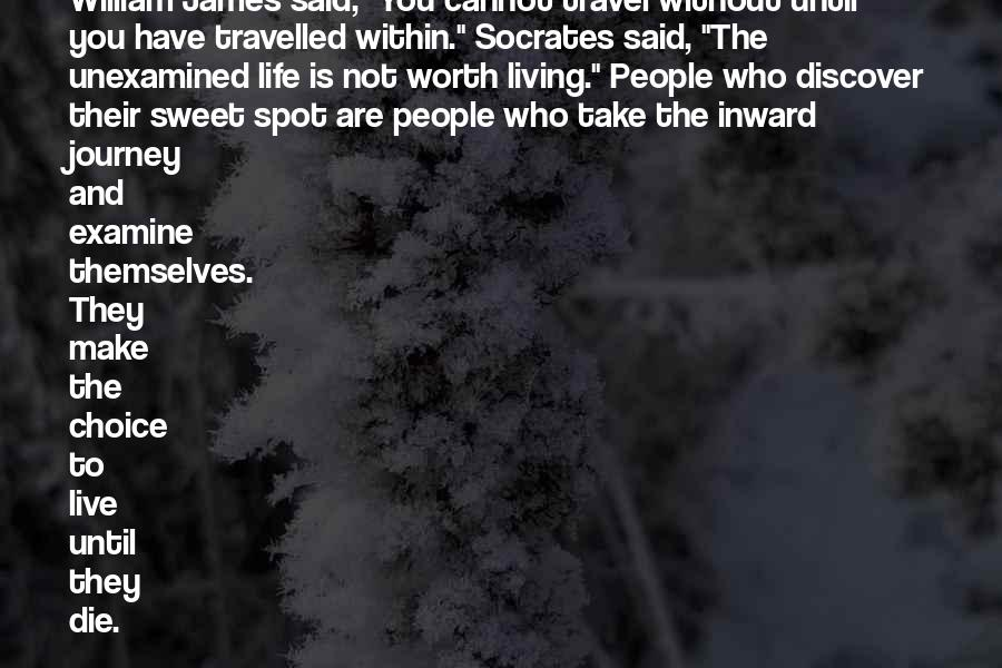 Quotes About Socrates Unexamined Life #19836